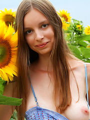 Admirable teen girl stripping clothes and showing attractive body in a field of sunflowers. - Erotic and nude pussy pics at GirlSoftcore.com