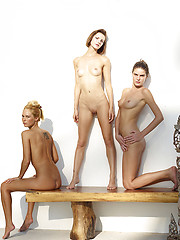 Three young girls in erotic photo session - Erotic and nude pussy pics at GirlSoftcore.com