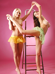 Playing on the ladder with two young bombshells is sexy and exciting. - Erotic and nude pussy pics at GirlSoftcore.com