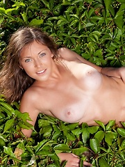 Tanned brunette with erotic poses against the green, leafy background. - Erotic and nude pussy pics at GirlSoftcore.com