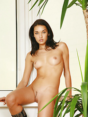 Petite but powerful dark haired gazelle with sensuous eyes and smooth skin.