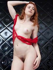 Orabelle's youthful allure stands out, with her pale smooth skin, fiery red hair, pink, perky boobs, and untrimmed bush.  - Erotic and nude pussy pics at GirlSoftcore.com