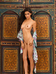 Playmate Miss September 2013 - Erotic and nude pussy pics at GirlSoftcore.com